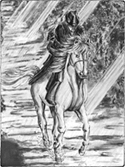 image of boy on horse